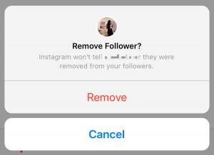 delete instagram follower